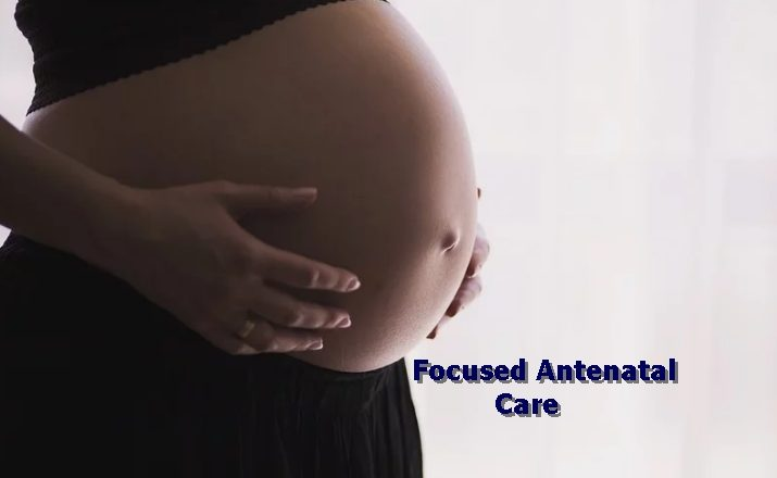 Importance of Focused Antenatal Care (FANC) to pregnant Mothers