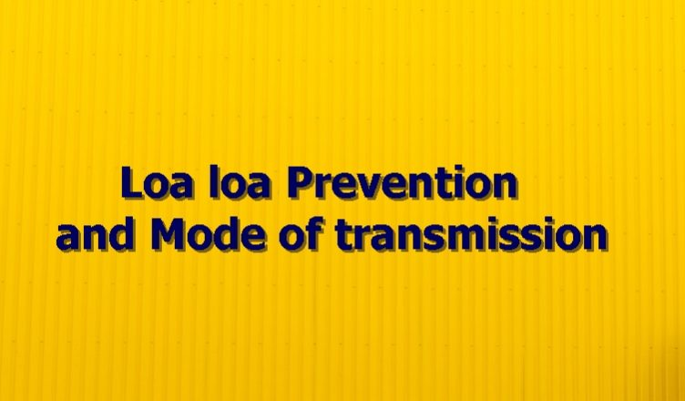 Loa loa Prevention and Mode of transmission