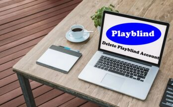 How To Delete Playblind Account