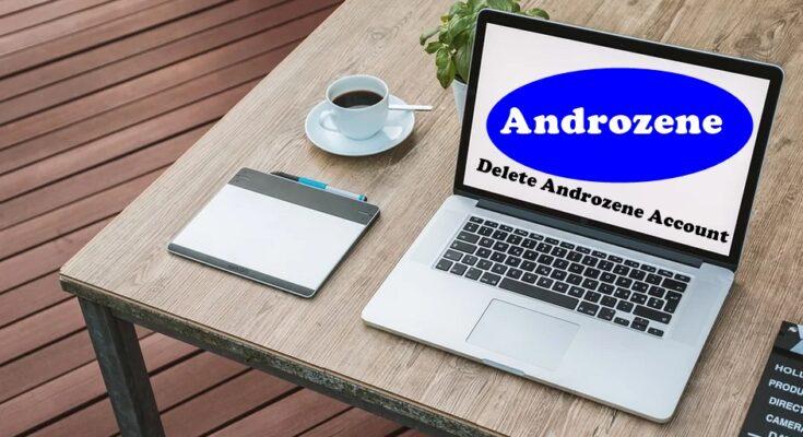 How To Delete Androzene Account