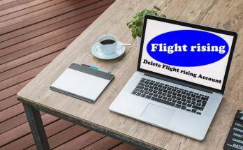 How To Delete Flight rising Account