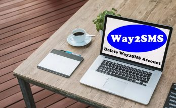How To Delete Way2SMS Account